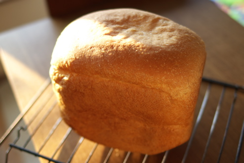 bread_kodama
